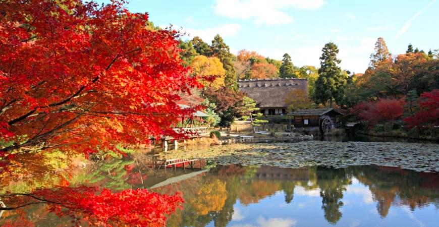 中部名古屋赏枫推荐东山动植物园
