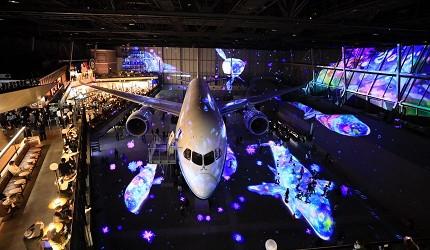 新特丽亚中部国际机场景点FLIGHT OF DREAMS