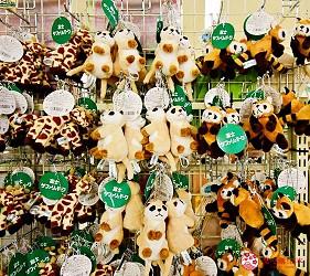 静冈景点亲子游推荐富士野生动物园的免税店商品