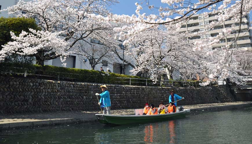 名古屋附近的推荐玩半日的西美浓文青小镇大垣正面看樱花树下泛舟穿上