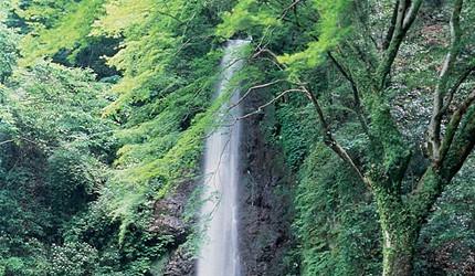 名古屋附近的推荐玩半日的西美浓文青小镇大垣养老瀑布