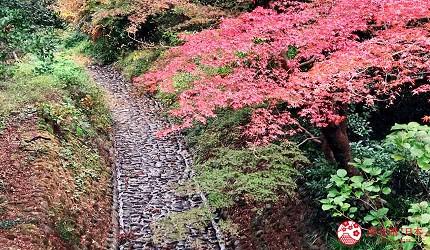 名古屋附近的推薦玩半日的西美濃文青小鎮大垣的秋楓紅葉