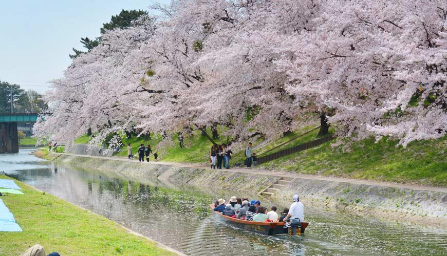 名古屋30分钟就到爱知自由行必去推荐推介冈崎观光景点冈崎城湖上花见船赏樱