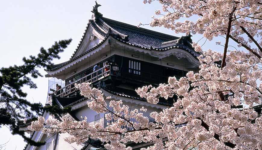 名古屋30分钟就到爱知自由行必去推荐推介冈崎花见船赏樱花观光景点冈崎城