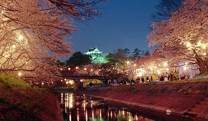 名古屋30分钟就到爱知自由行必去推荐推介冈崎花见船赏樱花观光景点冈崎城夜间点灯